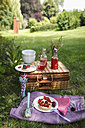 Picnic in park with berry pies and fresh drinks - EVGF000775