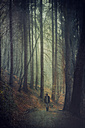Germany, Solingen, Man on forest path, Textured effect - DWI000134