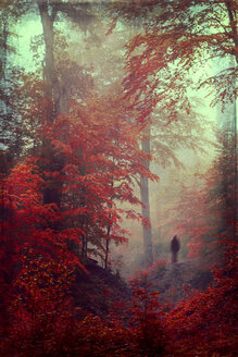 Germany, Dark silhouette of a person in autumn forest, Textured effect - DWI000135