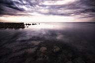 Croatia, Istria, coast at Umag - DAWF000097