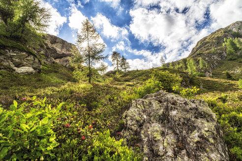 Austria, Carinthia, Fragant, mountainscape - DAWF000099