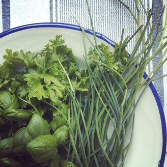 Fresh herbs in an enamel bowl - HAWF000419