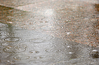 Raindrops falling in a puddle - RUEF001252