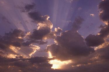 Sunbeams on a cloudy sky - RUEF001259