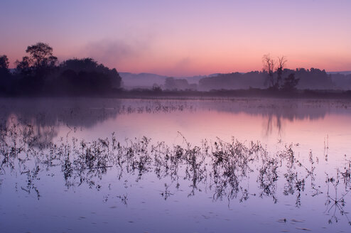 Germany, small lake at sunrise - RUEF001292