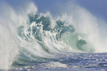 USA, Hawai, Oahu, Wave at the North shore - RUEF001273