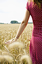 Young woman standing in a grainfield, partial view - SEF000816