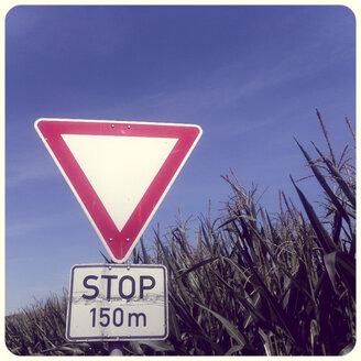 Give way sign at cornfield - SHIF000026