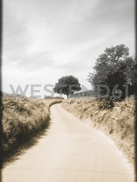 Field path - SHIF000010
