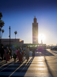 Africa, Morocco, Marrakesh-Tensift-El Haouz, Marrakesh, Koutoubia Mosque, Minaret - AM002614