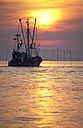 Germany, Lower Saxony, Dorum, Cutter on North Sea - OLE000023
