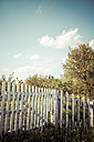 Germany, white wooden fence with trees in the background - KRP000936