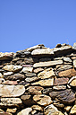 Greece, Cyclades, Naxos, partial view of an old natural stonewall - KRPF000859