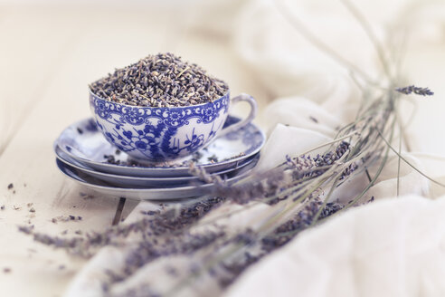 Lavender in a cup - SBDF001149