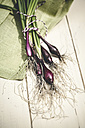 Bunch of red spring onions on wood - SBDF001227