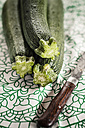 Three courgettes and an old knife on cloth - SBDF001230
