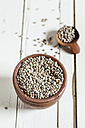 Earthenware dish and wooden spoon of organic hemp seed, Cannabis sativa, on white wood - SBDF001168