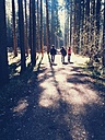 Hikers in forest, Aying, Bavaria, Germany - BRF000613