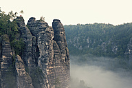 Germany, Saxony, morning mist at Elbe Sandstone Mountains - MSF004110