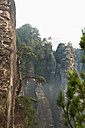 Germany, Saxony, Elbe Sandstone Mountains, rocks in the morning mist - MSF004114