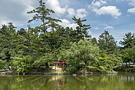 Japan, Nara, Todai-ji Temple, Torii Gate and Kagami pond - HLF000711