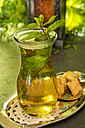 Turkish Peppermint Tea in a glass with fresh peppermint - CSTF000394