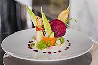 Vegetable salad on plate, Haute Cuisine - KMF001409