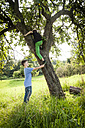 Boy helping his friend to climb down a tree - PAF000858