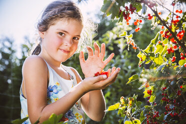Germany, Northrhine Westphalia, Bornheim, Girl inspecting currant bushes - MFF001212