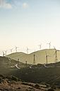 Spain, Andalusia, Tarifa, Wind farm on a road - KBF000154