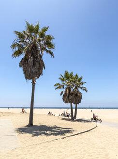 USA, California, Santa Monica, view to Santa Monica Beach and the bike path - JLR000005