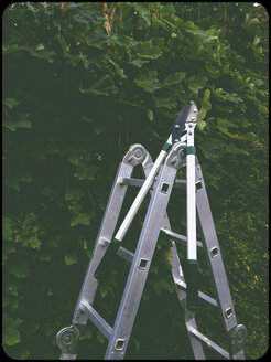 Step ladder and pruning shears in garden - SHIF000064