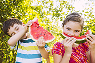 Children eating slices of watermelon in garden - MFF001285