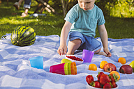 Boy sitting on a picnic blanket with fruit - MFF001290