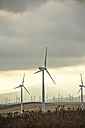 Spain, Andalusia, Tarifa, Wind farm - KBF000174