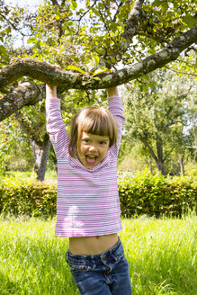 Portrait of laughing little girl hanging on a branch of an apple tree - LVF001855