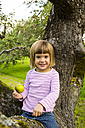 Portrait of smiling little girl with an apple sitting on an apple tree - LVF001794