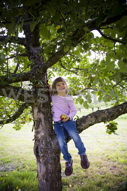 Portrait of smiling little girl with an apple sitting on an apple tree - LVF001796