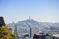 USA, California, San Francisco, view from Lombard Street on Telegraph Hill with Coit Tower - BRF000754