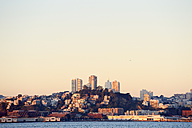 USA, California, San Francisco, skyline of North Beach and Telegraph Hill in morning light - BRF000714