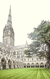United Kingdom, England, Wiltshire, Salisbury, Salisbury Cathedral, Courtyard with cloister - DISF000986