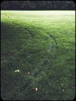 Tyre tracks in grass - SHIF000084