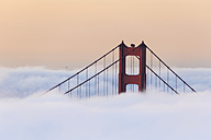 USA, California, San Francisco, Golden Gate Bridge in fog seen from Hawk Hill - FOF007011