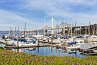 USA, California, San Francisco, Marina on Treasure Island - FOF007057