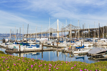 USA, California, San Francisco, Marina on Treasure Island - FOF007057