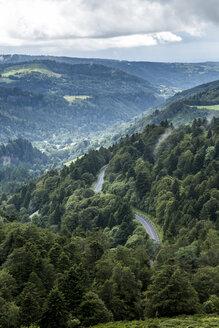France, Auvergne, Nature Reserve Vallee de Chaudefour - STSF000494