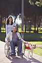 Woman with man in wheelchair and dog in park - ZEF000394