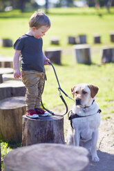 Little boy and his dog - ZEF000870