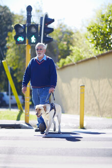 Visually impaired man crossing a street with his guide dog - ZEF000998