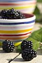 Bowl of blackberries on wooden table - YFF000245